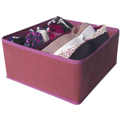 Органайзер для хранения белья М-12 Рыжий КОТ 28x28x13 см