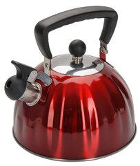 Regent 94-1506 Чайник из нержавейки 2.5 л для газовой плиты