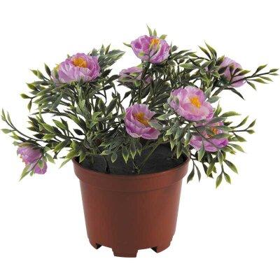 Искусственный цветок в горшке Пион кустовой для декора 23 см